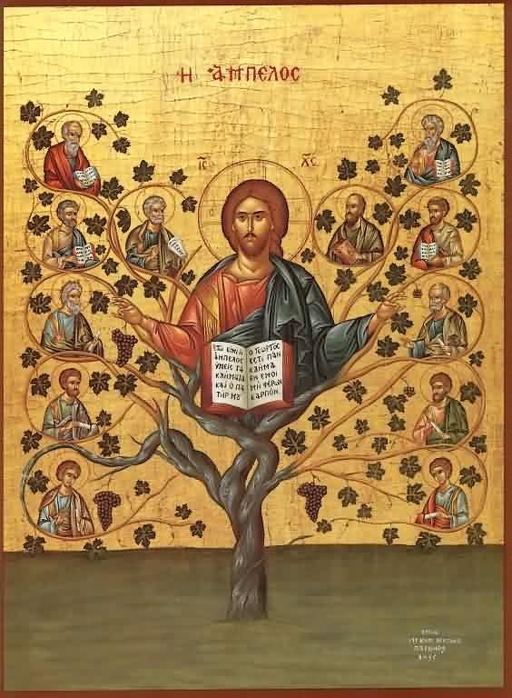 Jesus_Vine_Branches
